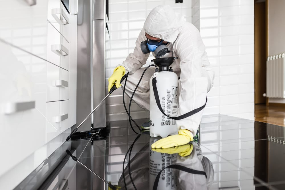 Structural Exterminator Licence - The Most Practical Of Exterminator Licenses